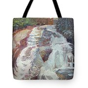 High Falls Dupont Forest Tote Bag