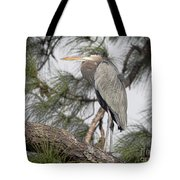 High In The Pine Tote Bag