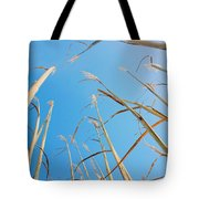 High In The Sky Tote Bag