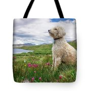 High Meadow With Eyes To The Sky Tote Bag