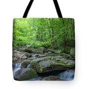 High Shoals Falls Trail In South Mountain Panorama Tote Bag by Ranjay Mitra