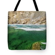 High Sierra Tarn Tote Bag