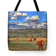 Highland Colorado Tote Bag