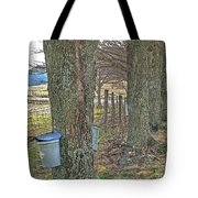 Highland County Va Virginia - Monterey - Mcdowell - Maple Harvest Tote Bag