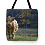 Highland Cow In France Tote Bag