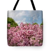 Highland Park Lilacs Detail Rochester Ny Tote Bag