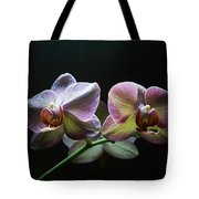 Highlighted Orchids Tote Bag