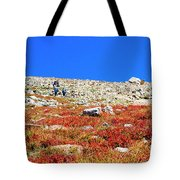 Hikers And Autumn Tundra On Mount Yale Colorado Tote Bag