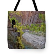 Hikers Zion National Park Tote Bag