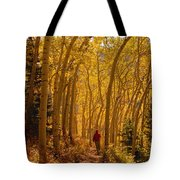 Hiking In Fall Aspens Tote Bag