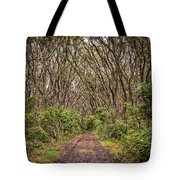 Hiking On Rangitoto New Zealand Tote Bag