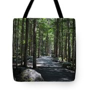 Hiking Trail At Brandywine Falls Provincial Park Tote Bag