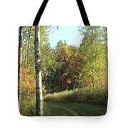 Hiking Trail In Autumn Sunset Tote Bag