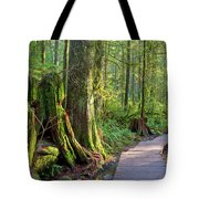 Hiking Trail Through Forest In Lynn Canyon Park Tote Bag