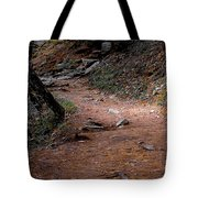 Hiking Trail To Abrams Falls Tote Bag by DigiArt Diaries by Vicky B Fuller