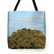 Hill Country Tree  Tote Bag