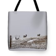 Hills Have Eyes Tote Bag