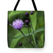 Hill's Thistle Flower And Buds Tote Bag