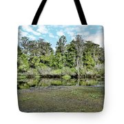 Hillsborough River 1 Tote Bag