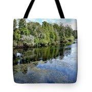 Hillsborough River 7 Tote Bag