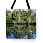 Hillsborough River Panorama 1 Tote Bag