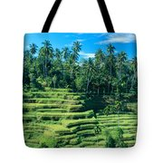 Hillside In Indonesia Tote Bag