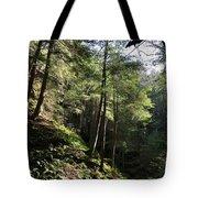 Hillside Landscape Tote Bag
