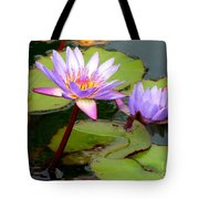 Hilo Water Lily 2 Tote Bag
