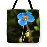 Himalayan Blue Poppy Tote Bag
