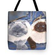 Himalayan Cats  Tote Bag