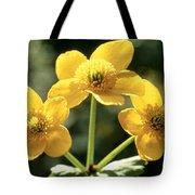 Himalayan Marsh Marigold Tote Bag