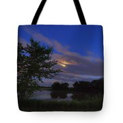 Hinkley Pond Moonset Tote Bag