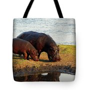 Hippo Mother And Child - Botswana Africa Tote Bag