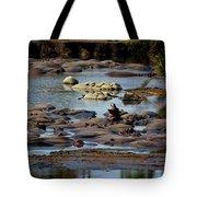 Hippo Raft Tote Bag