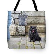 Hissing Cat Tote Bag