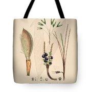 Historia Naturalis Palmarum Tote Bag