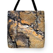 History Of Earth 4 Tote Bag by Heiko Koehrer-Wagner