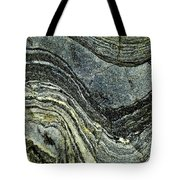 History Of Earth 8 Tote Bag