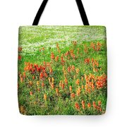 History Of The Paintbrush Tote Bag