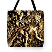History Unearthed Tote Bag