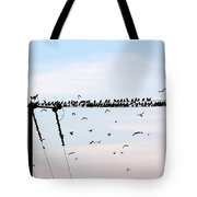 Hitchcock,  The Birds Tote Bag