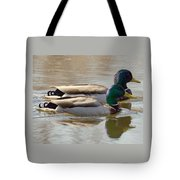 Two Mallards Swimming Quietly Tote Bag
