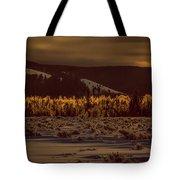 Hoar Frost In Dawn's Light Tote Bag