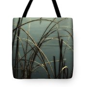 Hoar Frost On Pond 1 Tote Bag