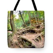 Hocking Hills Ohio Old Man's Gorge Trail Tote Bag