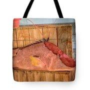 Hog Fish 02 Tote Bag