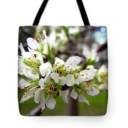 Hog Plum Blossoms Tote Bag