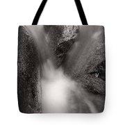 Hogback Creek And Granite Inyo Natl Forest Bw Tote Bag by Steve Gadomski