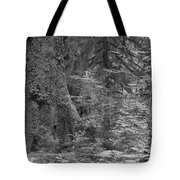 Hoh Rain Forest 3369 Tote Bag