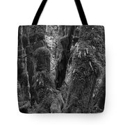 Hoh Rain Forest 3406 Tote Bag